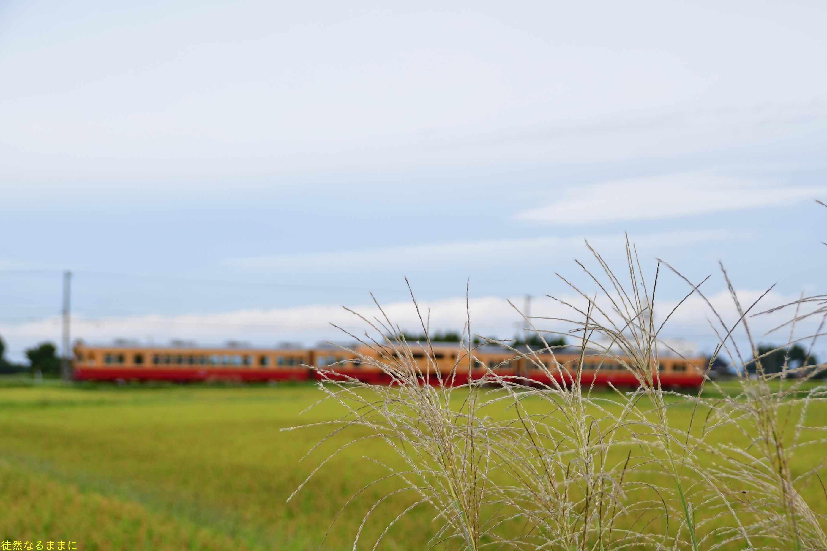 富山地方鉄道  立山線_d0285540_07112767.jpg