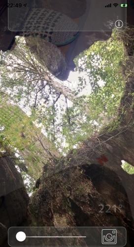 スマホに浮かび上がる滝やハートは、パワースポットの屋久島だった!_b0307951_23140084.jpg