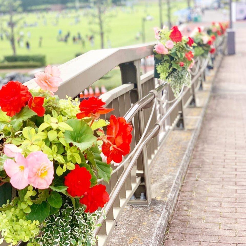 熱いぞ熊谷!!_f0220152_17585748.jpg