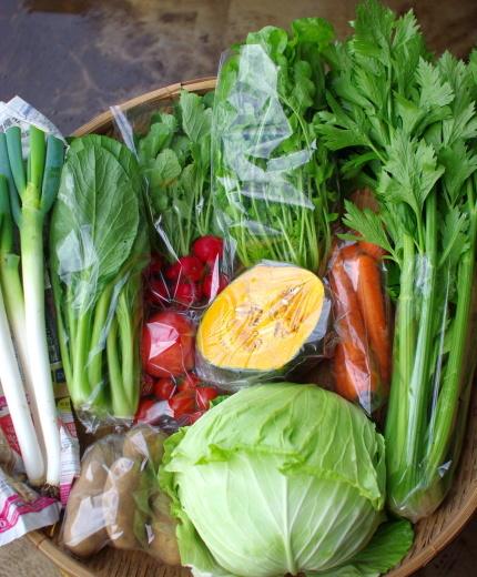 今週の野菜セット(9/24~9/28着)_c0110869_18045220.jpg