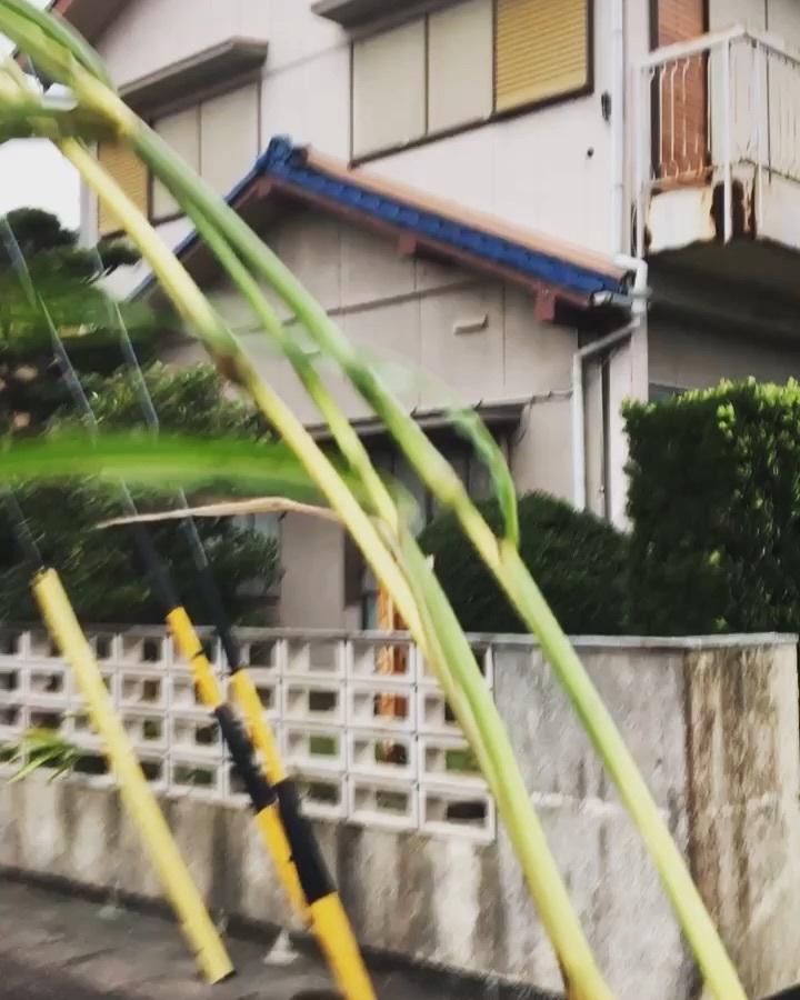 iom house 現地調査+台風調査_b0207676_16392416.jpg