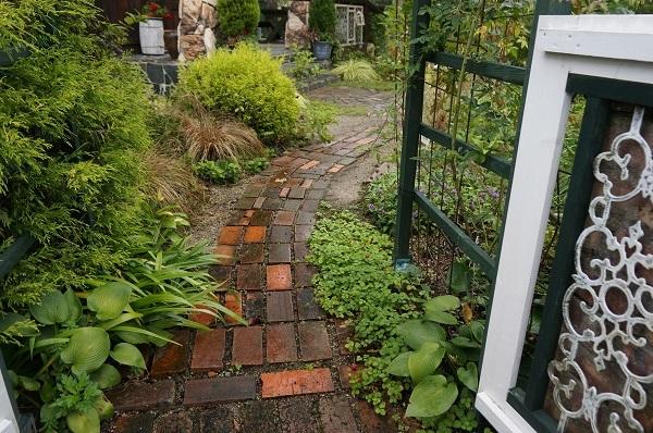 庭をひと回り_e0365880_22252247.jpg