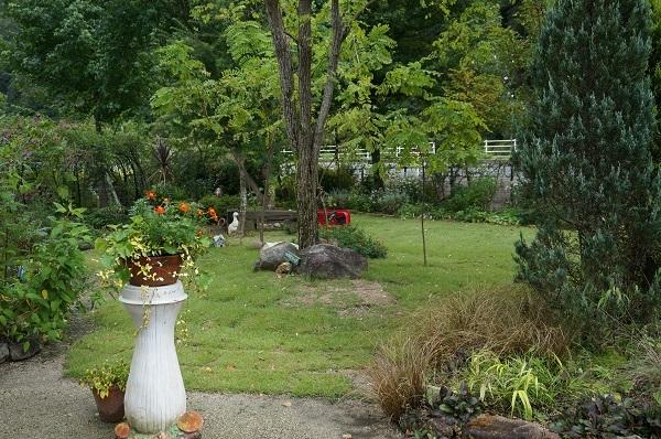 庭をひと回り_e0365880_22260716.jpg