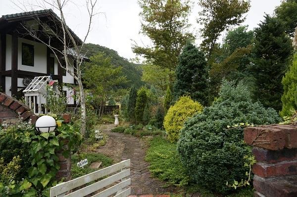 庭をひと回り_e0365880_22261887.jpg