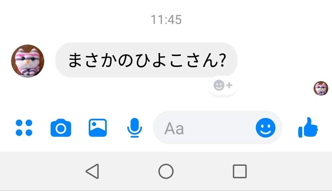 今週もヒヨコさん現れる_b0080681_07395089.jpg