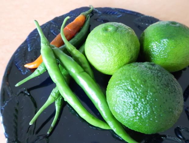 9/28(土)は柚子胡椒とゆずポン酢をつくります!_b0231686_00102098.jpg