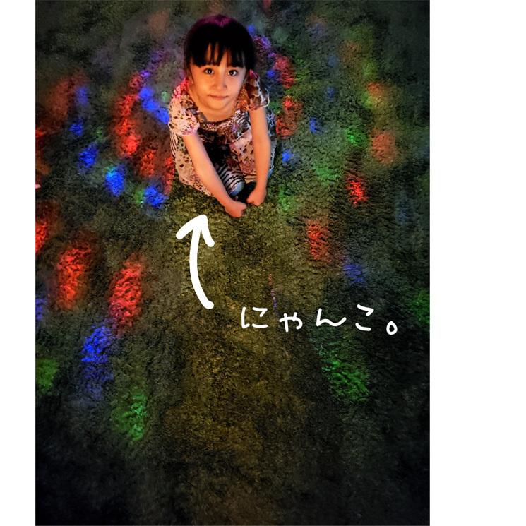 癒しのランチ…ペニンシュラちゃん♪(と主人のBD♡)_d0224894_21061640.jpg