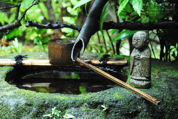 【散歩日和】京都 2/8 枩邑(まつむら)さん_f0054594_12100140.jpg