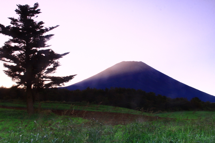 令和元年9月の富士(22)富士ヶ嶺の朝の富士_e0344396_22154029.jpg