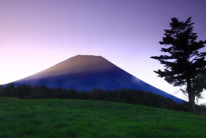 令和元年9月の富士(22)富士ヶ嶺の朝の富士_e0344396_22154607.jpg