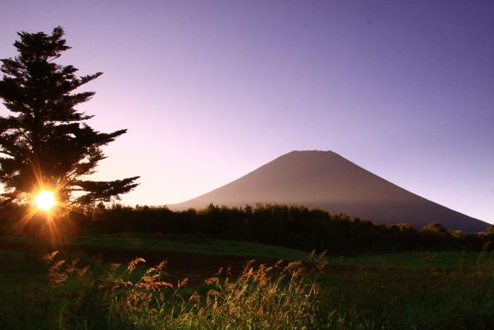 令和元年9月の富士(22)富士ヶ嶺の朝の富士_e0344396_22161577.jpg
