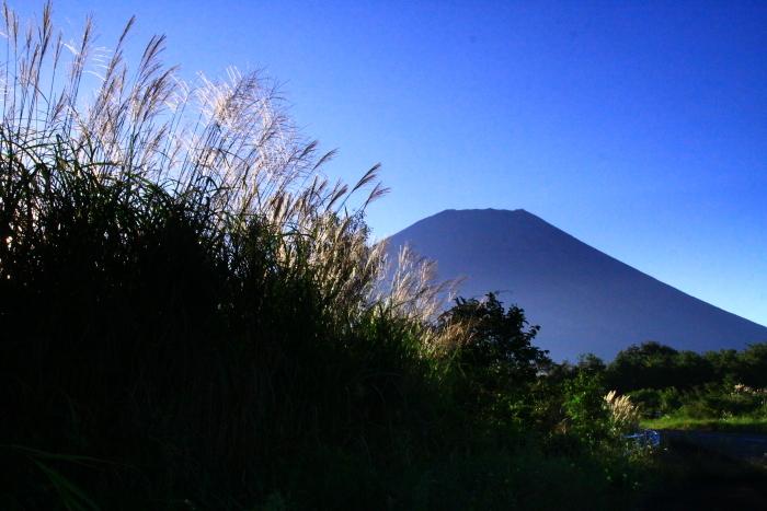 令和元年9月の富士(22)富士ヶ嶺の朝の富士_e0344396_22162426.jpg