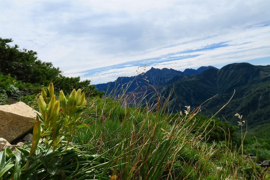 鷲羽岳、2019.9.20_f0138096_22040006.jpg