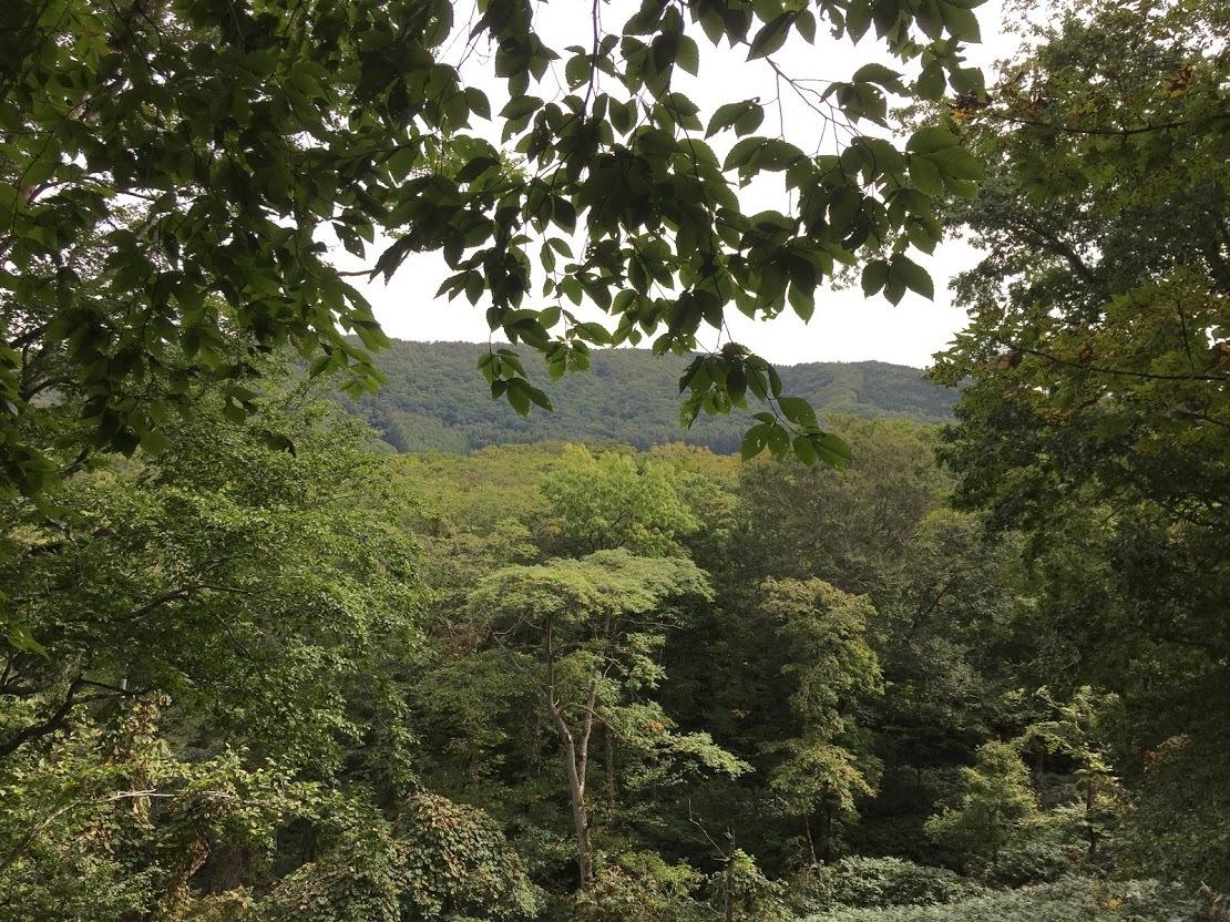 9月21-23日(土~月)黒松内キャンプ 参加:10名 天候:晴、晴、台風_c0173813_14170154.jpg