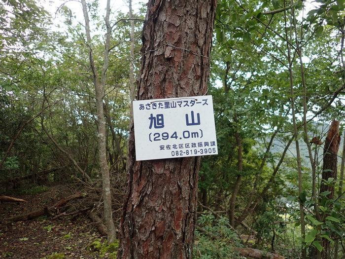 旭山と荒谷山登山_c0116915_01114581.jpg
