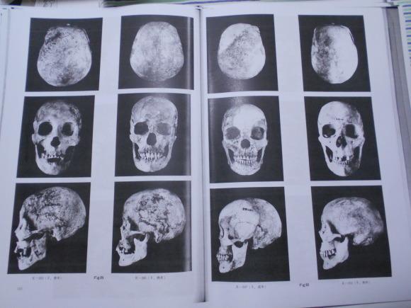 「甕棺の人骨は渡来人説」とは、邪馬台国九州説の否定なのか_a0237545_01293501.jpg