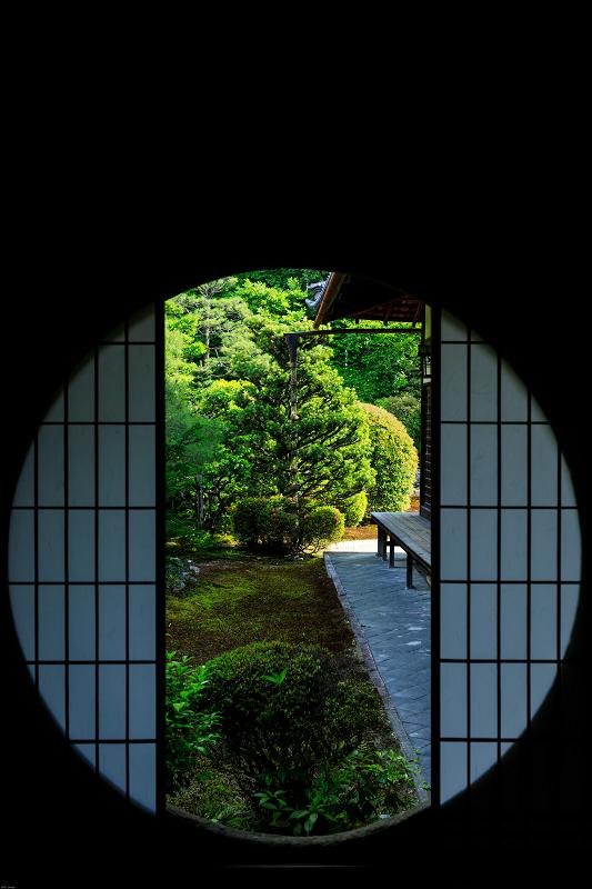 サツキ咲く重森三玲の庭(光明院・芬陀院)_f0155048_23572564.jpg