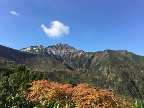富良野岳途中まで^^;_e0326953_23292117.jpg