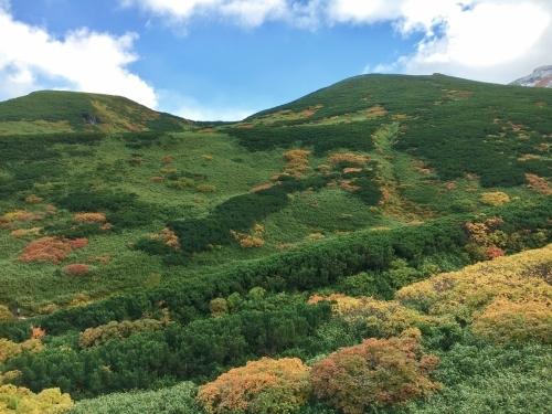富良野岳途中まで^^;_e0326953_23430354.jpg