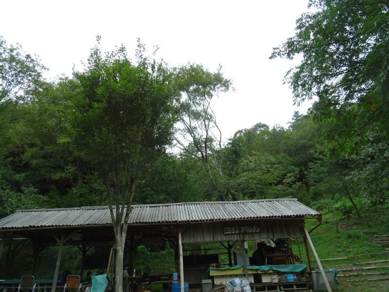 草刈り場所が多すぎる・・・孝子の森_c0108460_17333242.jpg