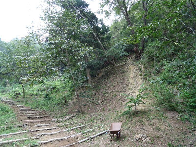 草刈り場所が多すぎる・・・孝子の森_c0108460_17434242.jpg