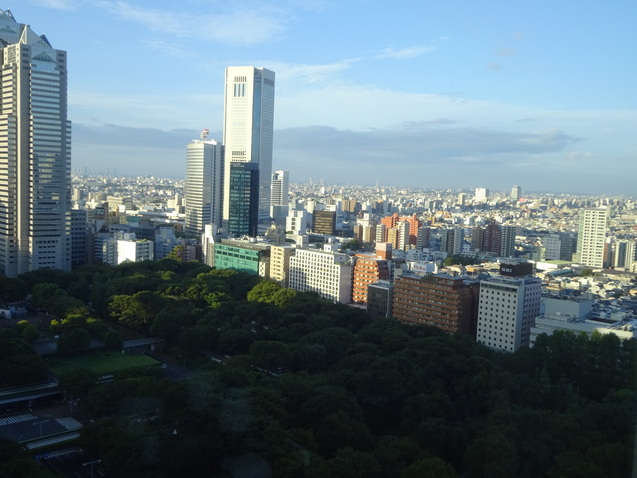 ハイアットリージェンシー東京 (2)_b0405262_17453849.jpg