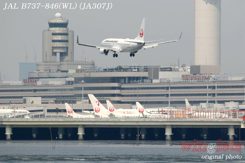'19年 川崎・浮嶋公園レポート ・・・ JAL/JA307J_f0352866_21272180.jpg