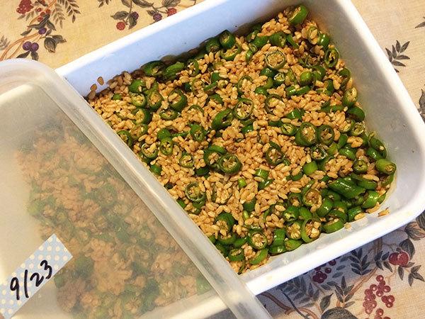 野菜乾燥器試運転_f0101174_15384458.jpg