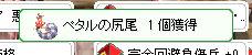 d0330183_132545.jpg