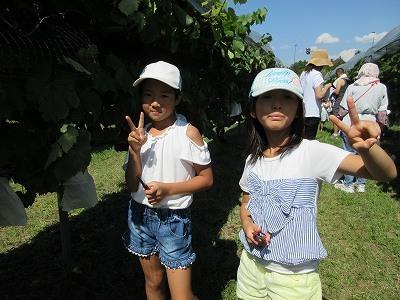 ぶどう収穫祭とワイン祭り     若宮八幡宮十五夜大祭_b0092684_13124027.jpg