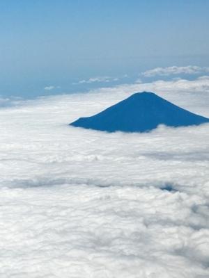 富士山と宮地嶽神社_c0237291_13512836.jpeg
