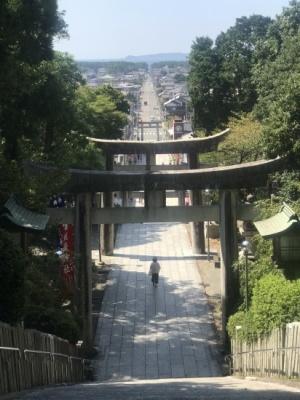 富士山と宮地嶽神社_c0237291_13595942.jpeg