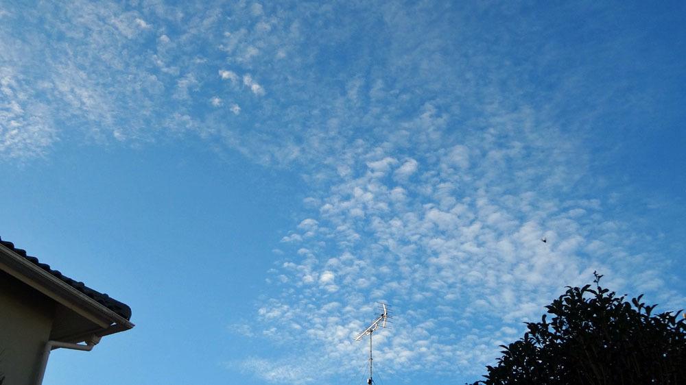 秋の到来を感じる「うろこ雲」_b0114798_16383164.jpg