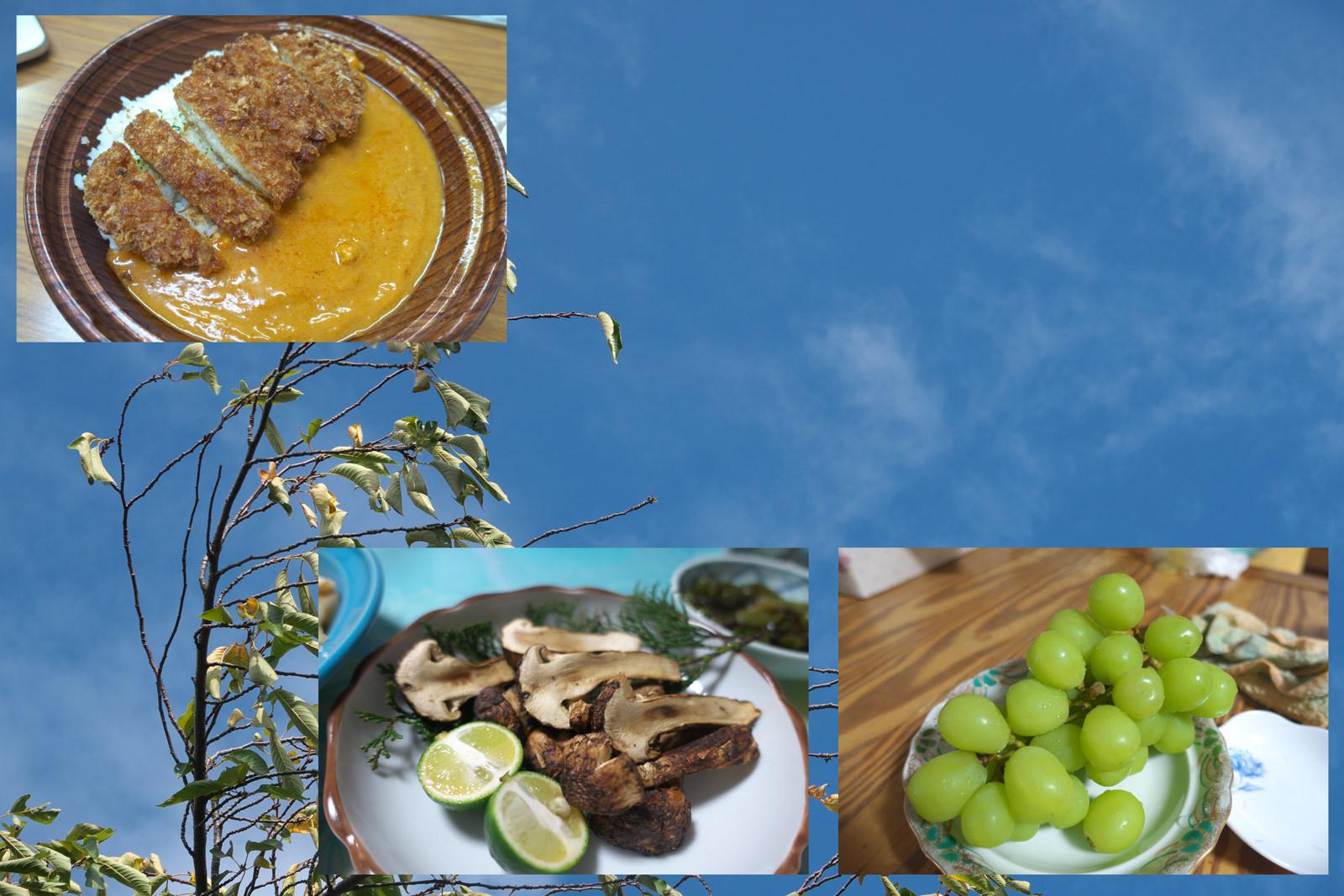 松茸を食べた日_a0271402_07263334.jpg