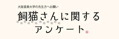 【大阪音楽大学の先生方へお願い】飼猫さんに関するアンケート_a0201203_11513568.jpg