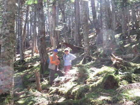 2019年9月6-7日山中湖大倉山荘ベースにキノコ狩り、バーベキュー_c0242406_12391343.jpg