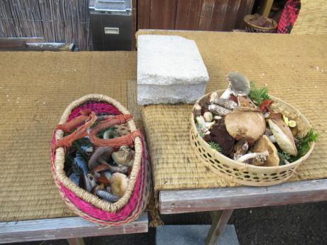 2019年9月6-7日山中湖大倉山荘ベースにキノコ狩り、バーベキュー_c0242406_13185404.jpg