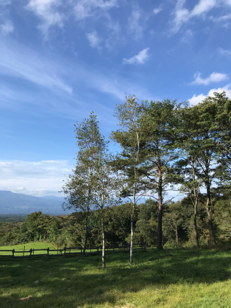 軽井沢の旅 その3 @浅間牧場_b0157216_16593936.jpg
