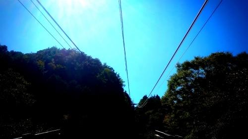 BLUE!!_d0167225_15310558.jpg