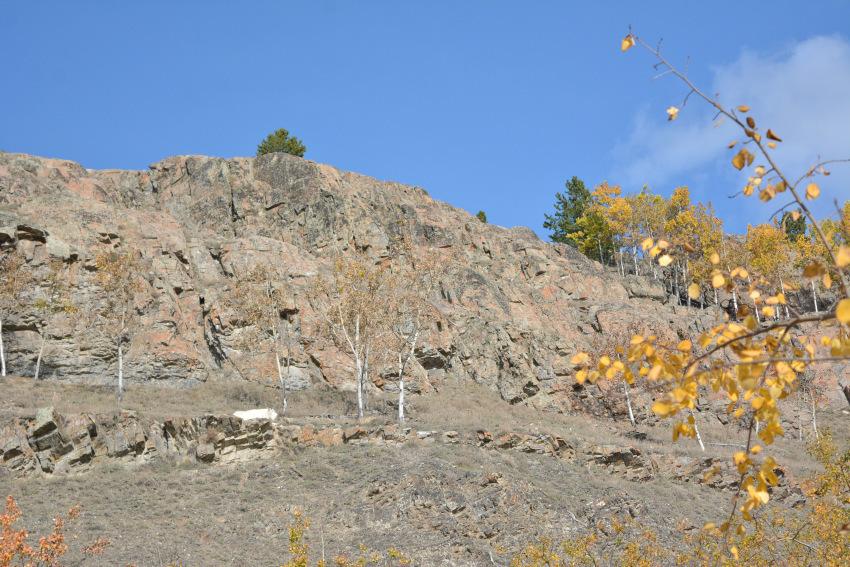 黄葉散策して、秋の動物達をチェック!ミート・ザ・ワイルド_d0112928_02120766.jpg