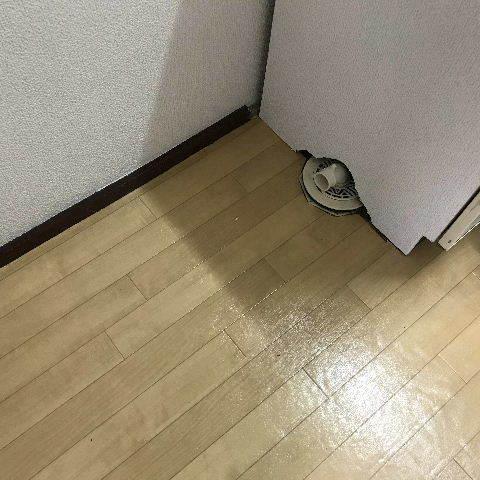 17.7日め_f0031037_19412021.jpg