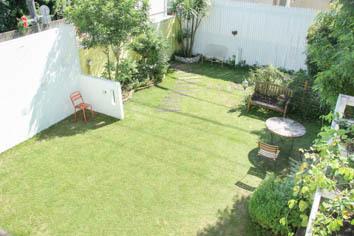 9月の芝生*_a0184348_14324966.jpg