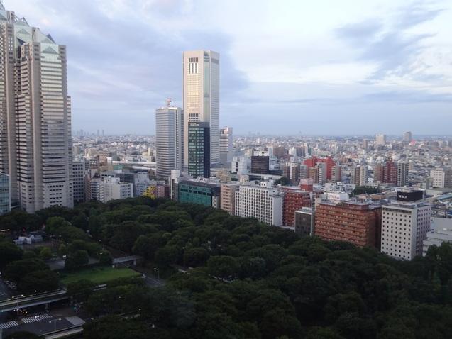 ハイアットリージェンシー東京 (4)_b0405262_10563720.jpg