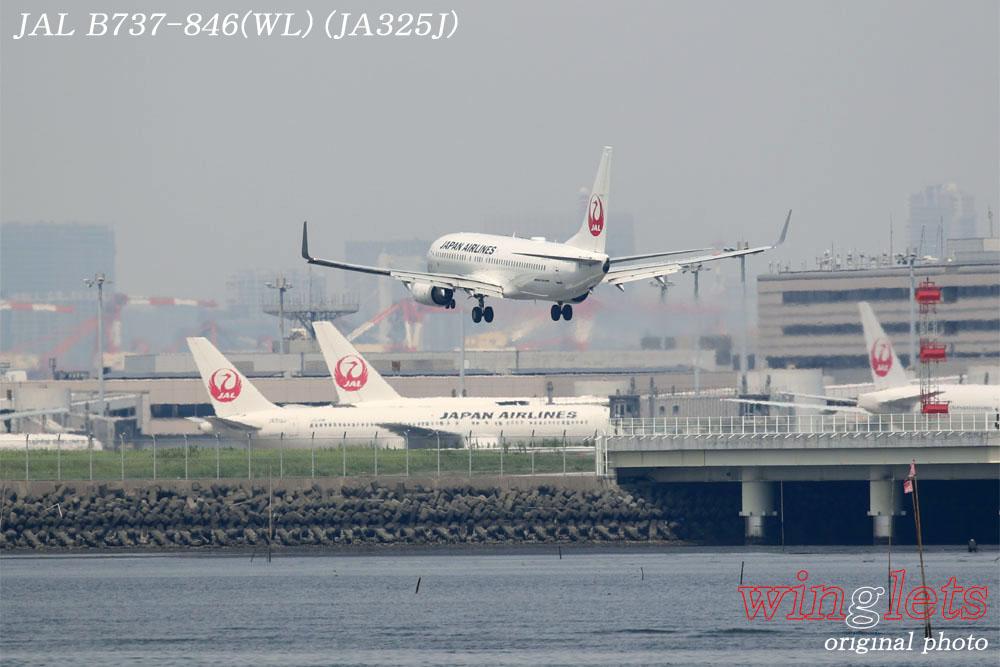 '19年 川崎・浮嶋公園レポート ・・・ JAL/JA325J_f0352866_21371262.jpg