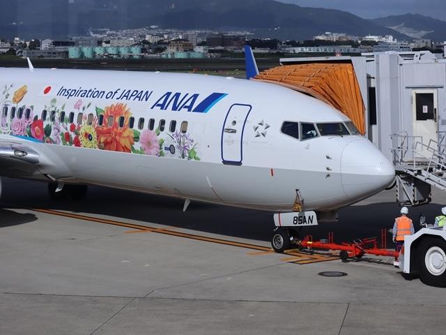 藤田八束の楽しい飛行場@伊丹空港が一段と楽しくなりました。楽しいラッピング飛行機・・・子供達大喜び_d0181492_06324380.jpg