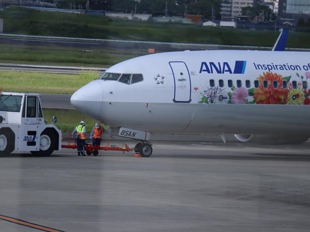 藤田八束の楽しい飛行場@伊丹空港が一段と楽しくなりました。楽しいラッピング飛行機・・・子供達大喜び_d0181492_06343011.jpg
