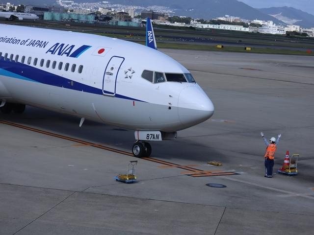 藤田八束の楽しい飛行場@伊丹空港が一段と楽しくなりました。楽しいラッピング飛行機・・・子供達大喜び_d0181492_06350300.jpg