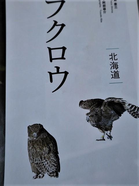 少子化対策、高齢者対策、日本の明日は明るい未来か、希望が持てる日本の社会づくり・・・琵琶湖、津軽平野_d0181492_07223096.jpg