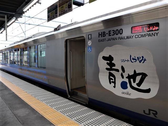 藤田八束の鉄道写真@弘前駅からの鉄道写真、奥羽線通勤通学列車は元気いっぱい、リゾート「しらかみ」は楽しげな家族たち、駅には楽しめる展示品がいっぱいです。おもてなしの駅弘前にて_d0181492_07344427.jpg