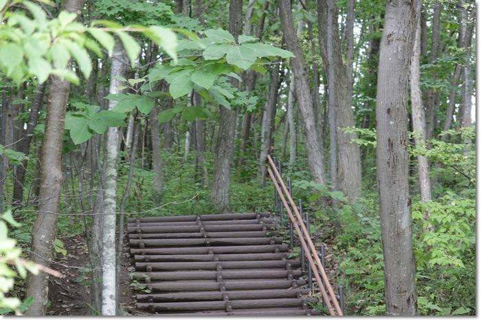 平岡公園('19・9・20)_f0146493_16501422.jpg